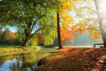 | Bildquelle: fotolia.com : © Jag_cz
