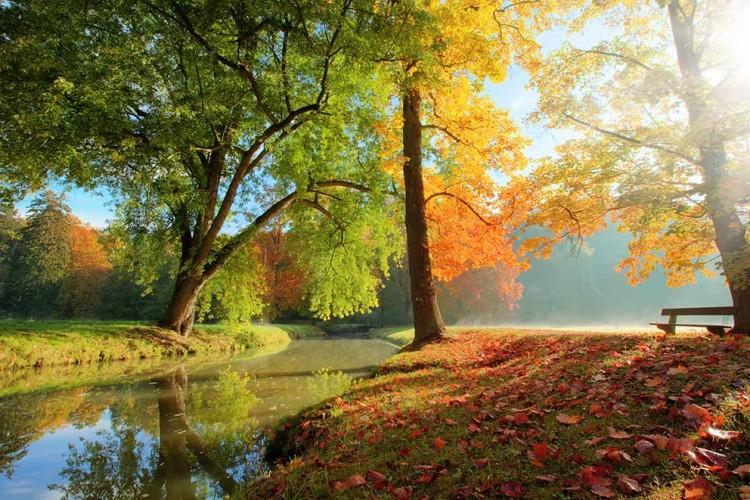   Bildquelle: fotolia.com : © Jag_cz