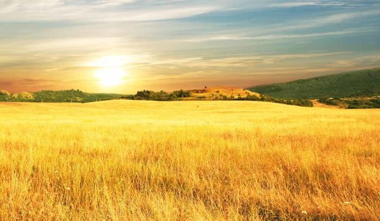   Bildquelle: fotolia.com : © Galyna Andrushko