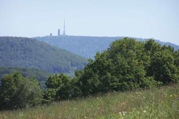 Externer Beirat für das Modellprojekt Thüringer Waldumbau berufen