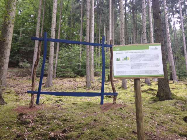| Bildquelle: © Thüringer Forstamt Marksuhl