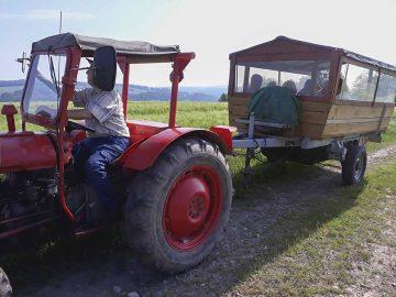 Auf dem Anhänger eines Traktors konnte jene, die nicht mehr so gut zu Fuß sind, an einem wunderschönen Tag teilhaben | Bildquelle: © Th. Levknecht