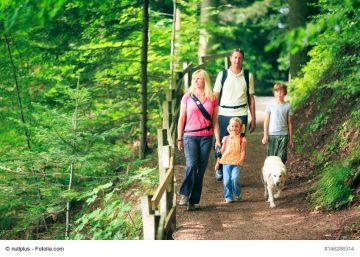 Bildquelle: © nullplus / Fotolia.com Symbolbild