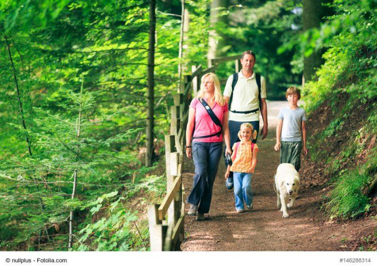 Symbolbild | Bildquelle: © nullplus / Fotolia.com