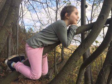 Ferientipp für Kids: Wildkatzen-Kindercamp