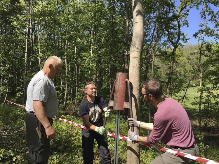 Mit vollem Einsatz für den Luchs - für den Zaunbau werden helfende Hände gesucht! | Bildquelle: © Wildtierland Hainich gGmbH